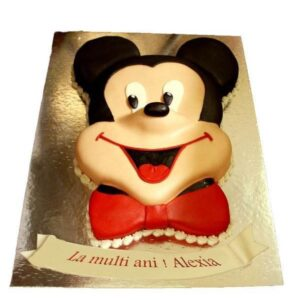 Tort Mickey Mouse vesel-0