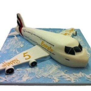 Tort avion pasageri-0