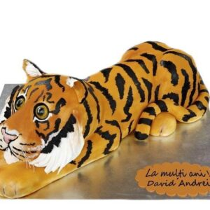 Tort tigru