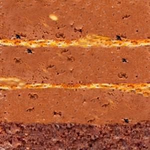 Tort Krantz